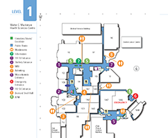 Stollery 1rst Floor Map
