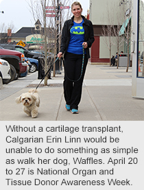 Without a cartilage transplant, Calgarian Erin Linn would be unable to do something as simple as walk her dog, Waffles. April 20 to 27 is National Organ and Tissue Donor Awareness Week.