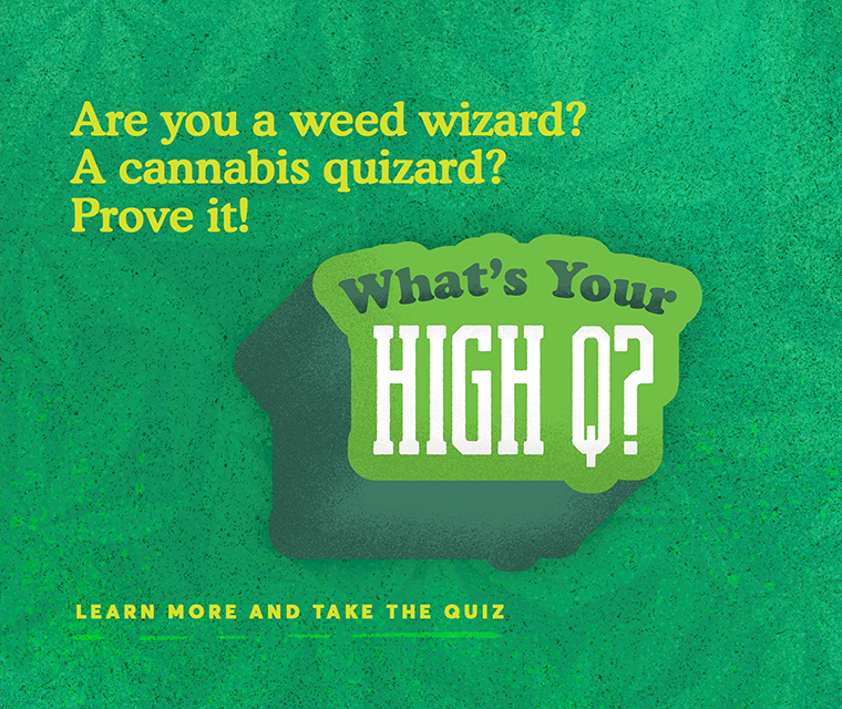 what's your high q?