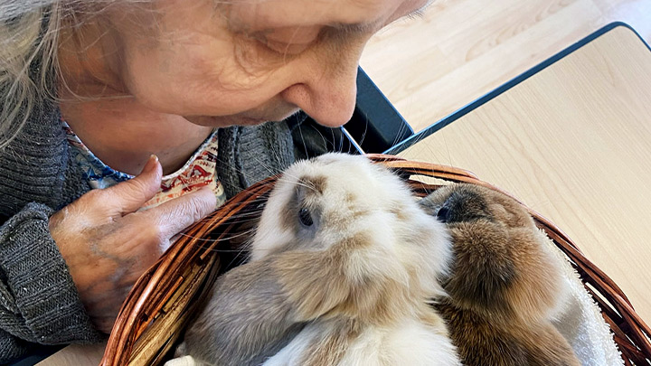 Vera Marston, a long term care resident at Northwest Health Centre in High Level, cozies up to her new long-eared pals Marvin and Henry.